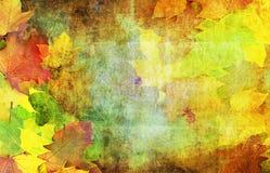De decoratieve herfst royalty-vrije stock foto's
