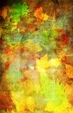 De decoratieve herfst Royalty-vrije Stock Fotografie