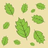 De decoratieve inzameling van het bladerenpictogram voor veel gebruik vector illustratie