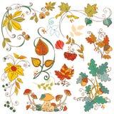 De decoratieve takken van de Herfst Stock Afbeeldingen