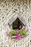De decoratieve takken van de muur Stock Fotografie