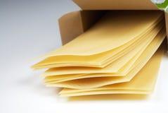 De deegwaren van lasagna's in doos Stock Afbeelding