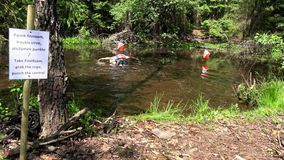 De deelnemers van de Orienteeringsconcurrentie op controlepost onder moeraswater stock footage