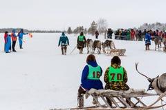 De deelnemers van hertenrassen wachten op het begin stock foto
