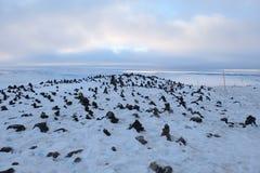De dekking van het toendralandschap met sneeuw in de vroege Winter op de manier van Royalty-vrije Stock Afbeeldingen