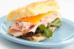 De delicatessenwinkel gesneden sandwich van Turkije Royalty-vrije Stock Afbeelding