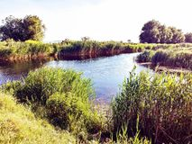 De delta van Donau stock foto