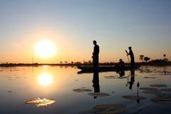 De Delta van Okavango Stock Foto's