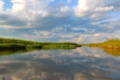 De Delta van Okavango Stock Afbeeldingen