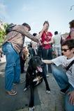 De demonstratie tegen perreras Milaan kan 8 2011 Royalty-vrije Stock Foto's