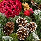 De Denneappels van Kerstmis Stock Afbeelding