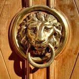 De details van de ingangsdeur Stock Foto's