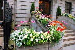 De deur en de bloemen van de ingang stock afbeelding