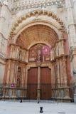 De Deur van de kathedraal stock fotografie