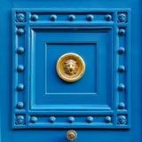 De deur van de leeuw Stock Afbeeldingen
