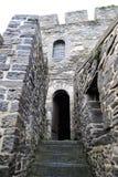 De deur van het kasteel Royalty-vrije Stock Afbeeldingen