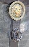 De deurkloppers van de messingsleeuw Stock Foto