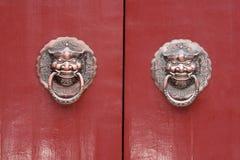 De deurslot van de leeuw Stock Afbeeldingen