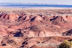 21 de dezembro de 2014 - floresta hirto de medo, AZ, EUA Imagens de Stock Royalty Free