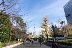2 de dezembro de 2016: Tóquio Japão: parque e construções Fotos de Stock