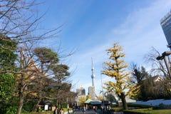 2 de dezembro de 2016: Tóquio Japão: parque e construções Foto de Stock Royalty Free