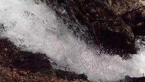 De Dia van Battle Creek in de Herfst stock footage