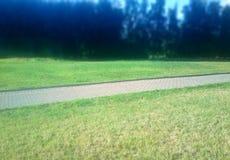 De diagonale achtergrond van het de zomer groene gazon van de parkweg royalty-vrije stock foto's