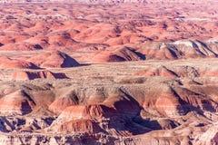21 de diciembre de 2014 - bosque aterrorizado, AZ, los E.E.U.U. Imágenes de archivo libres de regalías
