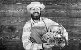De dienst van de landbouwbedrijflevering levert verse groenten Verse organische groenten in rieten mand Mensen het gebaarde landb royalty-vrije stock afbeeldingen