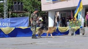 De de diensthond gaat in openlucht naast militair in militaire eenvormig dichtbij de bouw stock video