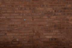 De diepe Donkere Achtergrond van de Baksteen Abstracte Textuur Stock Foto's