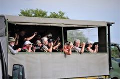 De dieren bekijken toeristen in Zuid-Afrika royalty-vrije stock fotografie