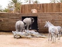 de dieren beklimmen op Noah Bak, voorhistorisch park in Tunesië, aan royalty-vrije stock afbeeldingen