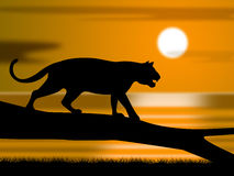 De Dieren en de Astronomie van Tiger On Tree Represents Wildlife royalty-vrije illustratie