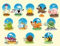 De dieren en de huisdieren van het beeldverhaal Stock Fotografie