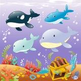 De dieren van de familie in het overzees. Stock Foto's