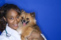 De dierenarts en de hond van de vrouw. Royalty-vrije Stock Foto's