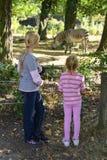 In de dierentuin Royalty-vrije Stock Afbeeldingen
