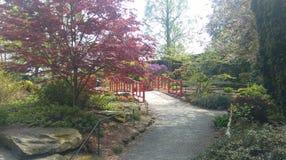 De dierentuin van Chester Royalty-vrije Stock Foto's