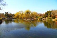 De dierentuin van Peking royalty-vrije stock afbeeldingen