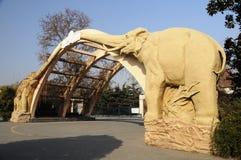 De dierentuin van Shanghai Royalty-vrije Stock Afbeeldingen