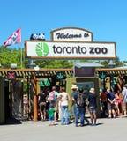 De Dierentuin van Toronto Stock Fotografie