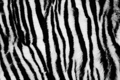De dierlijke Achtergrond van het Bont Royalty-vrije Stock Afbeeldingen