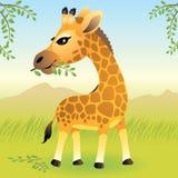 De Dierlijke inzameling van de baby: Giraf Stock Foto