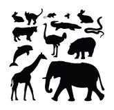 De dierlijke inzameling van het dierentuinsilhouet Stock Foto's