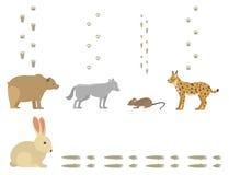 De dierlijke voetafdrukken omvatten zoogdieren en vogels van het het spoorwild van de voetdruk van het spoorstappen vector van he royalty-vrije illustratie