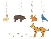 De dierlijke voetafdrukken omvatten zoogdieren en vogels van het het spoorwild van de voetdruk van het spoorstappen vector van he Stock Foto's