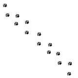 De dierlijke zwarte betaalt en het wild dierlijke zoogdierstappen, huisdierensporen Het dier betaalt Dierlijke de voetdrukken van vector illustratie