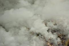 De dikke Rook wordt vrijgegeven van een Stapel van Bladeren royalty-vrije stock fotografie