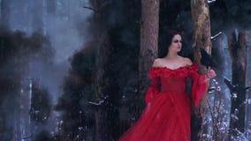 De dikke zwarte rook vult strak het hout achter het meisje met een kraai stock videobeelden